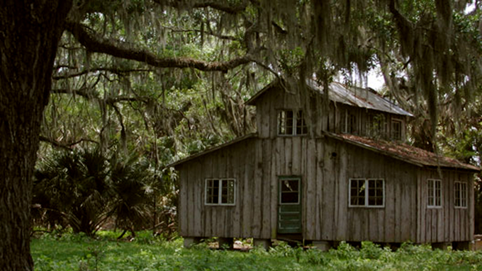 an old building with rough wooden siding set among trees