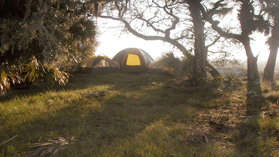 a group of tents clustered in an open space between trees